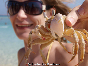 My wife with a gost crab at the beach of Gifton Island, E... by Svetoslav Dimitrov 